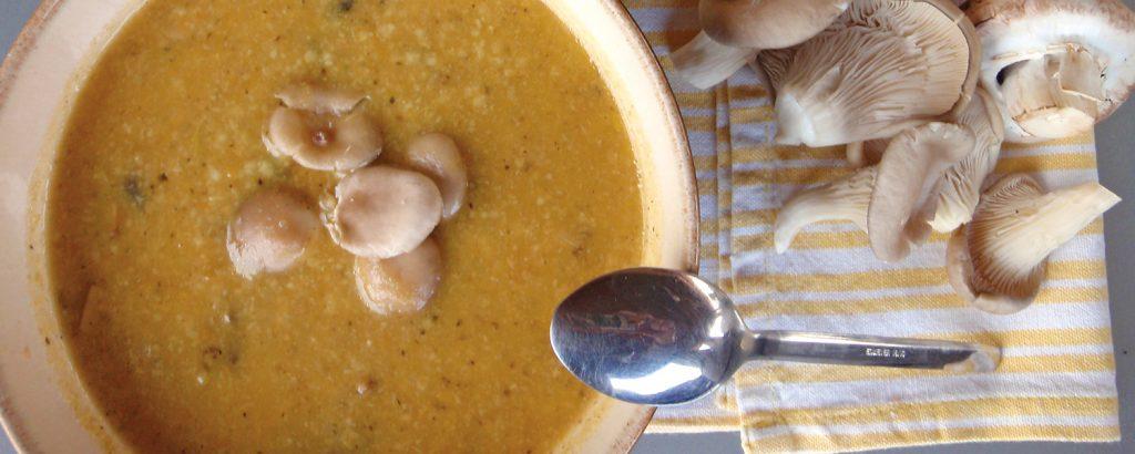 Σούπα 3 μανιταριών