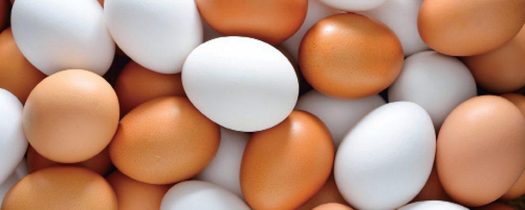 Η θρεπτική αξία του αυγού
