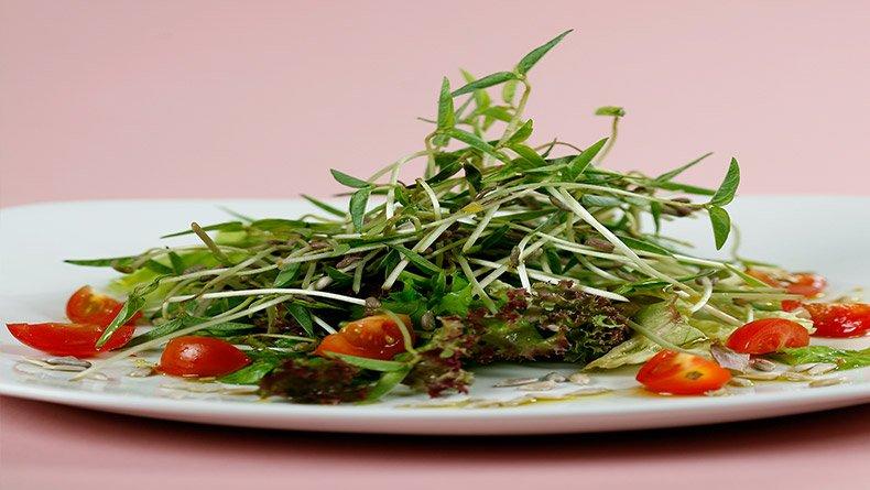 Σαλάτα με φύτρα ηλιόσπορους και λινέλαιο