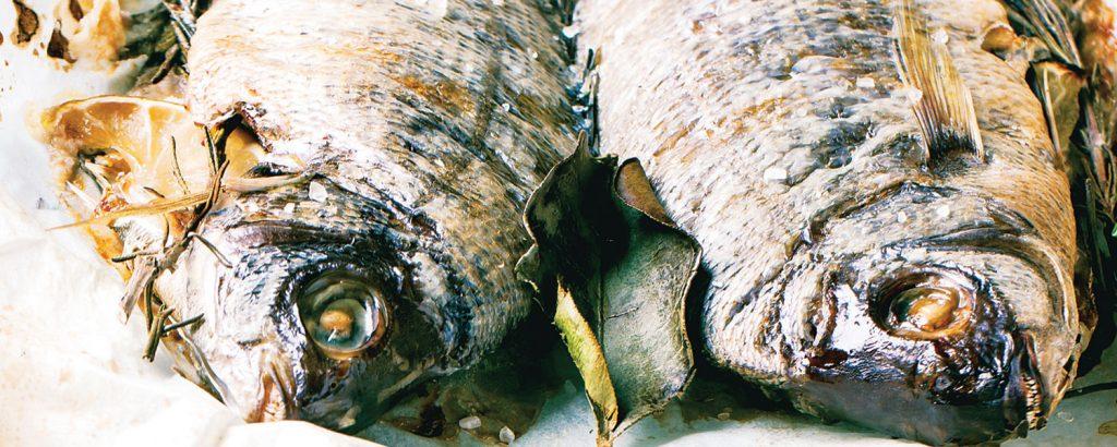 Ψάρι σε αρωματικό «κρεβατάκι»